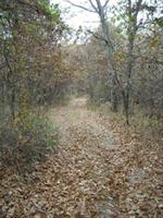 Hiking and Equestrian Trails 2