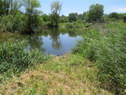 Pond Access