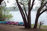 Paddleboats by the Lake