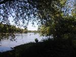 Upstream view of Cedar River
