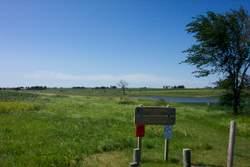 Meier Memorial Marsh