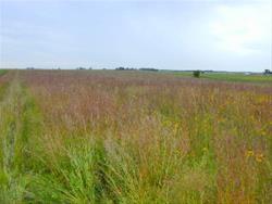 Butler Wildlife Conservation Area Wildlife Refuge