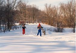 cross-country skiiing