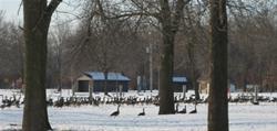 Winter at WLP