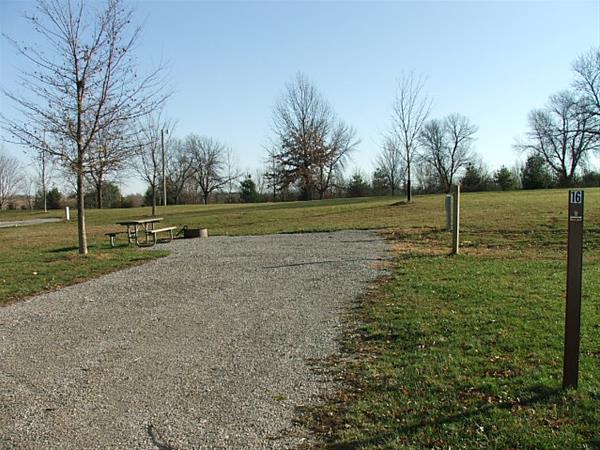 Roberts Creek East, Campsite 16 -No Image