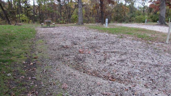 Pollmiller Campsite #18 Reservable -No Image