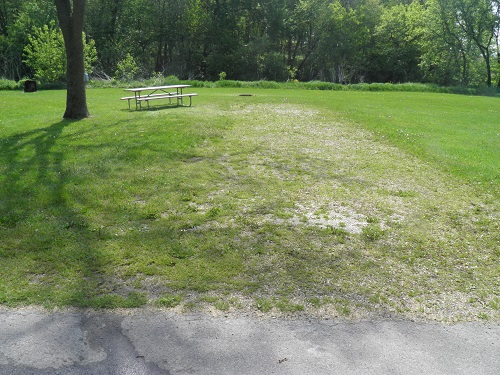 New Wine Park: Campsite 01 -No Image