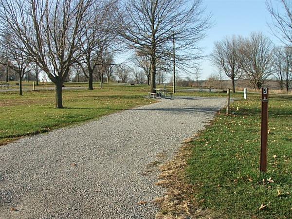 Roberts Creek East, Campsite  9 -No Image