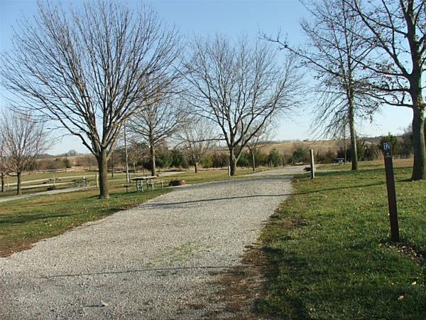 Roberts Creek East, Campsite 12 -No Image