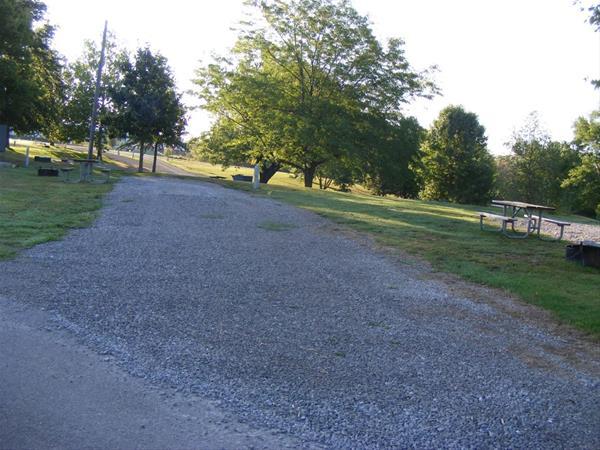 Marion County Park, Campsite 48 -No Image